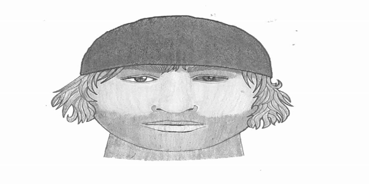 Police release sketch of downtown Charleston attempted robbery suspect