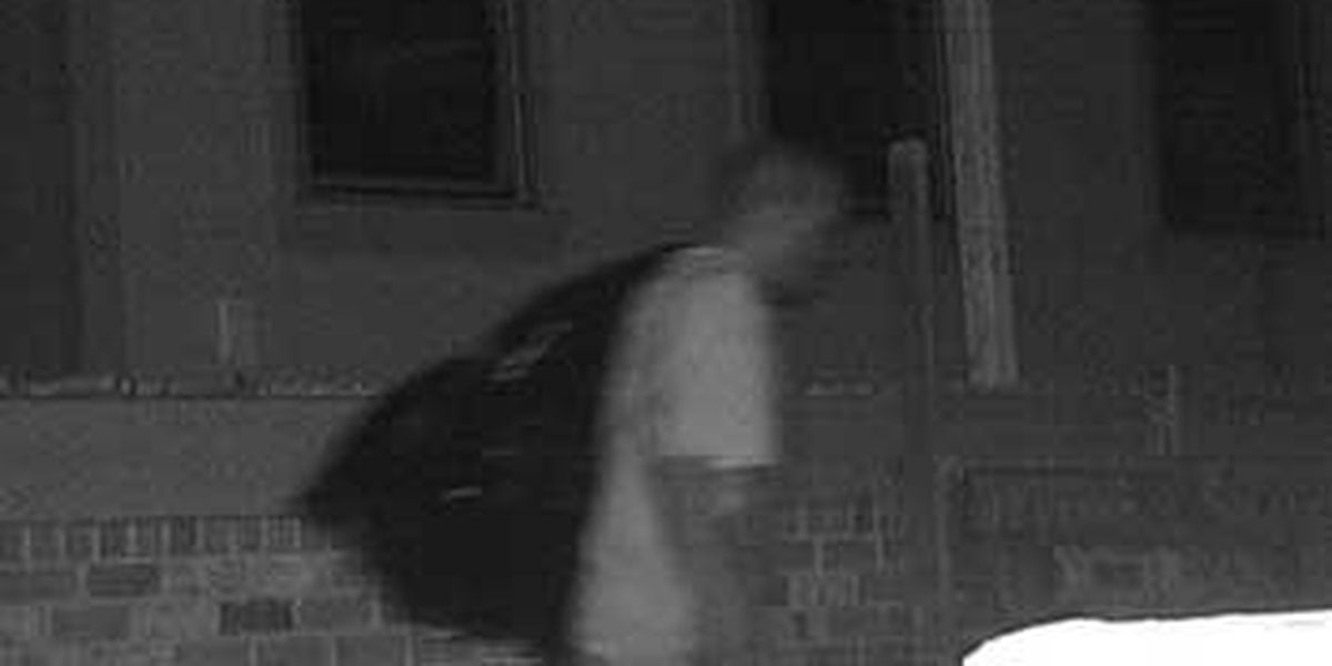 Investigators searching for downtown Charleston burglary suspect