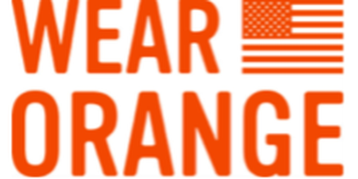 """""""Wear Orange"""" campaign reaches S.C. for National Gun Violence Awareness"""