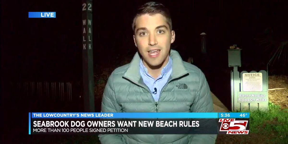 VIDEO: Seabrook Island residents claim town is 'anti-dog' as they petition to change beach rules
