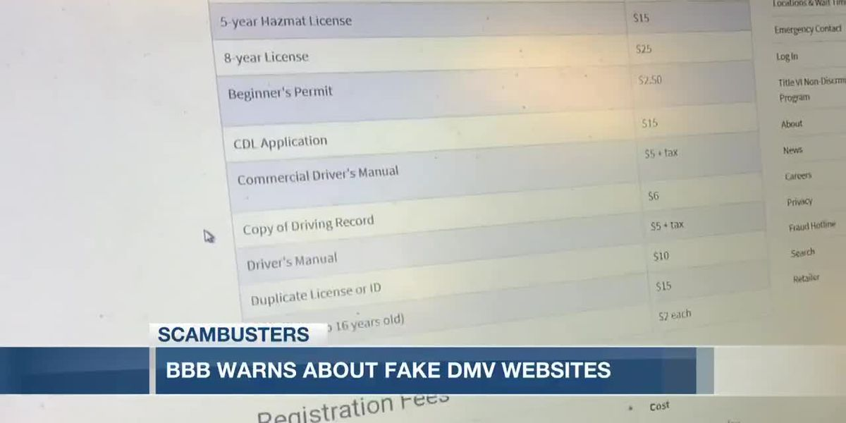 VIDEO: Live 5 Scambusters: BBB warns about phony DMV websites