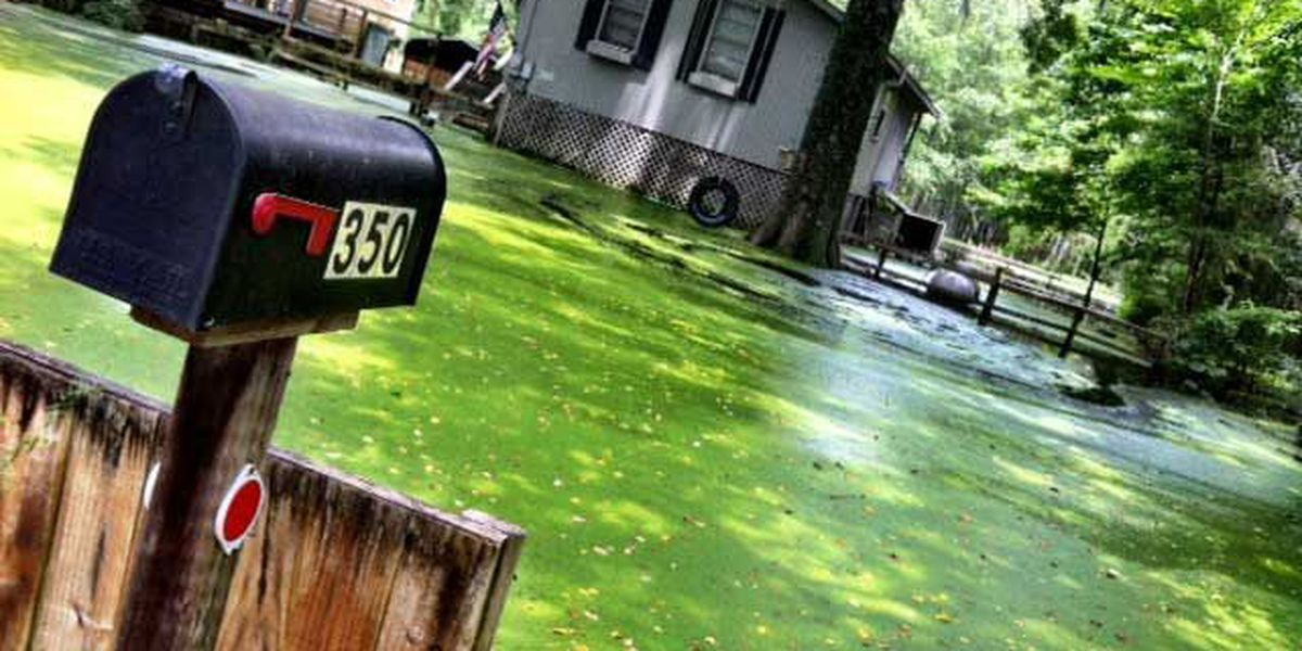 Community swallowed by water as Edisto River hits 14 feet