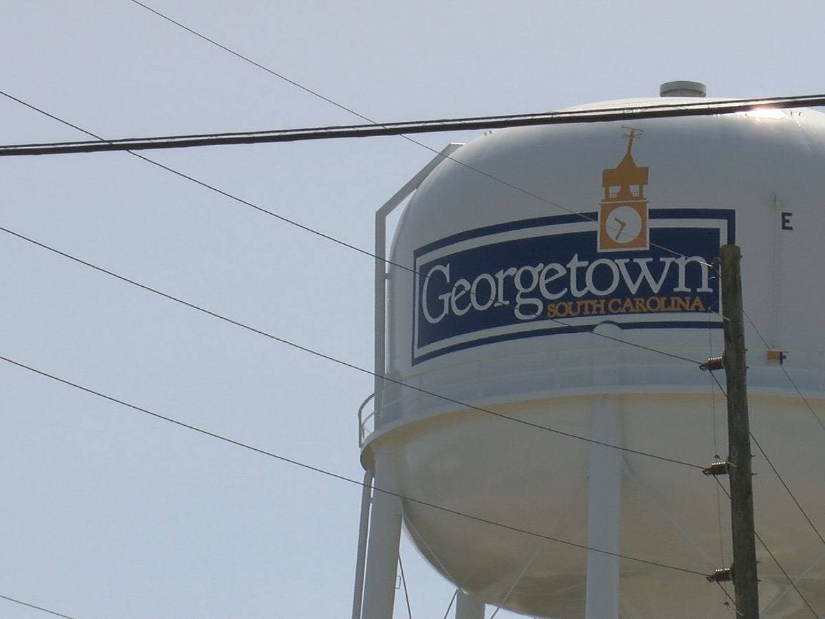 Georgetown County sees surge in poll workers