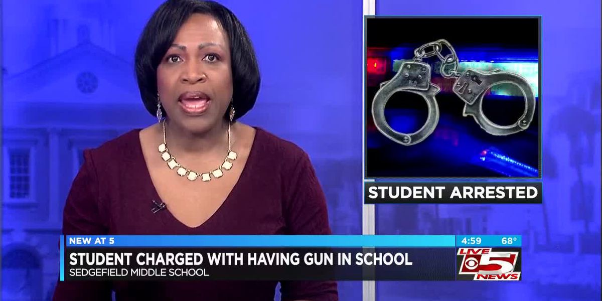 VIDEO: Teenager charged after loaded gun found at middle school in Berkeley County