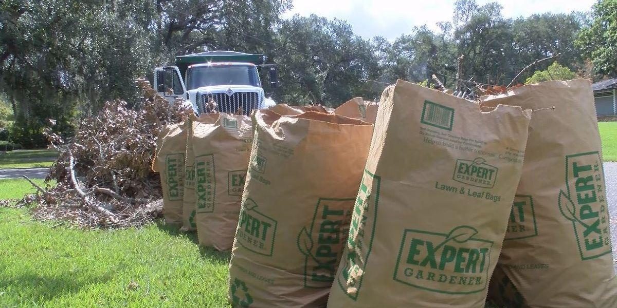 Hurricane Dorian debris remains curbside in nearly 200 Mt. Pleasant neighborhoods