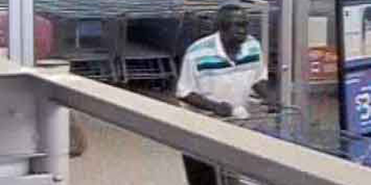 Detectives release surveillance photos of wanted James Island thief