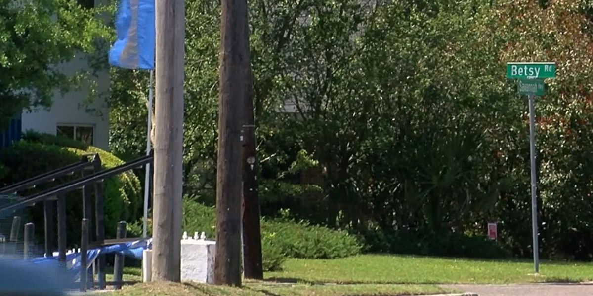 Large car carriers in Savannah Hwy turn lane among concerns for possible new dealership