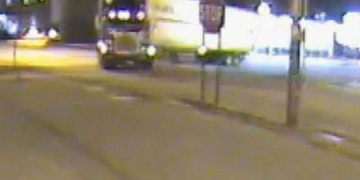Family gets $325K in lawsuit after woman killed by 18-wheeler