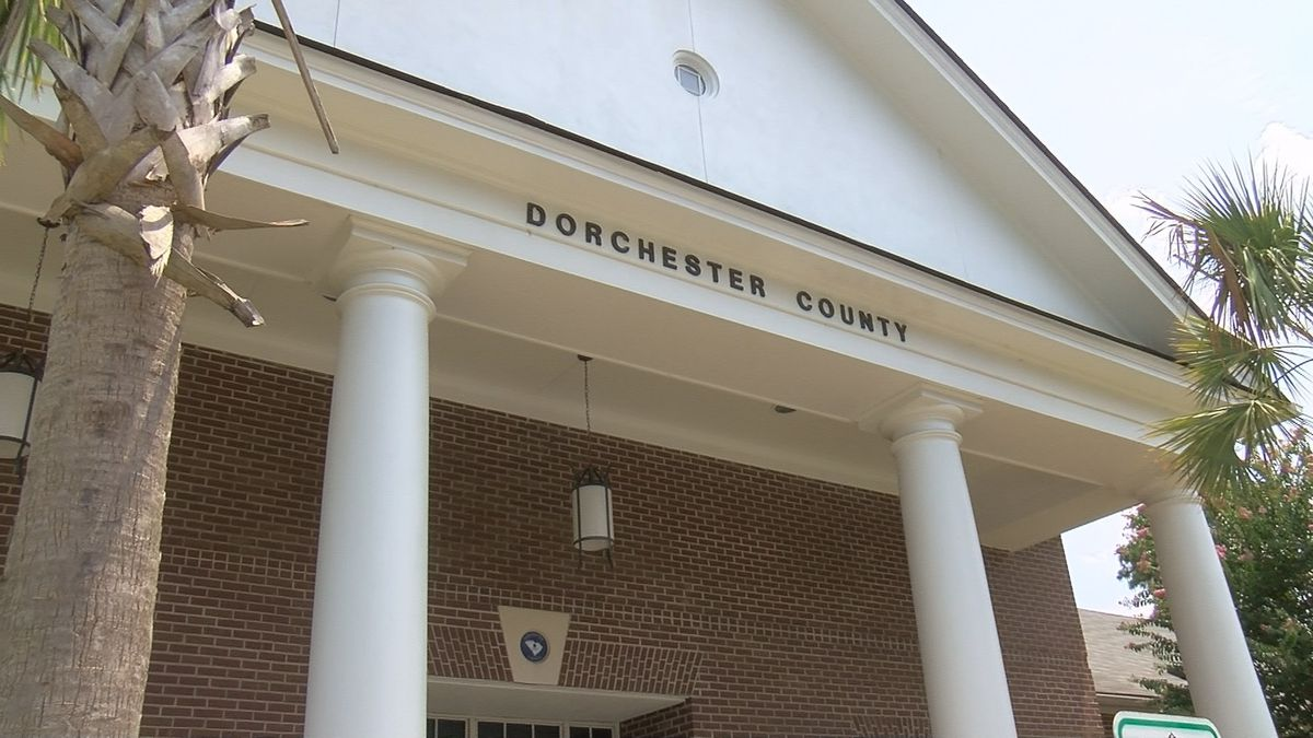 Dorchester County Council considering two referendums to fund park projects, libraries