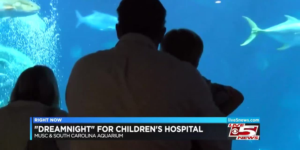 SC Aquarium holds 'DreamNight' event for MUSC Children's Hospital patients