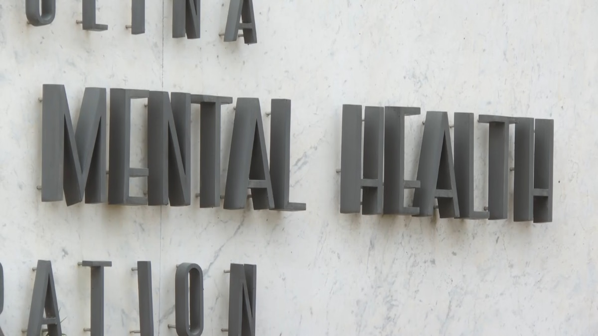 Mental health counselors urge governor to expand SC ...