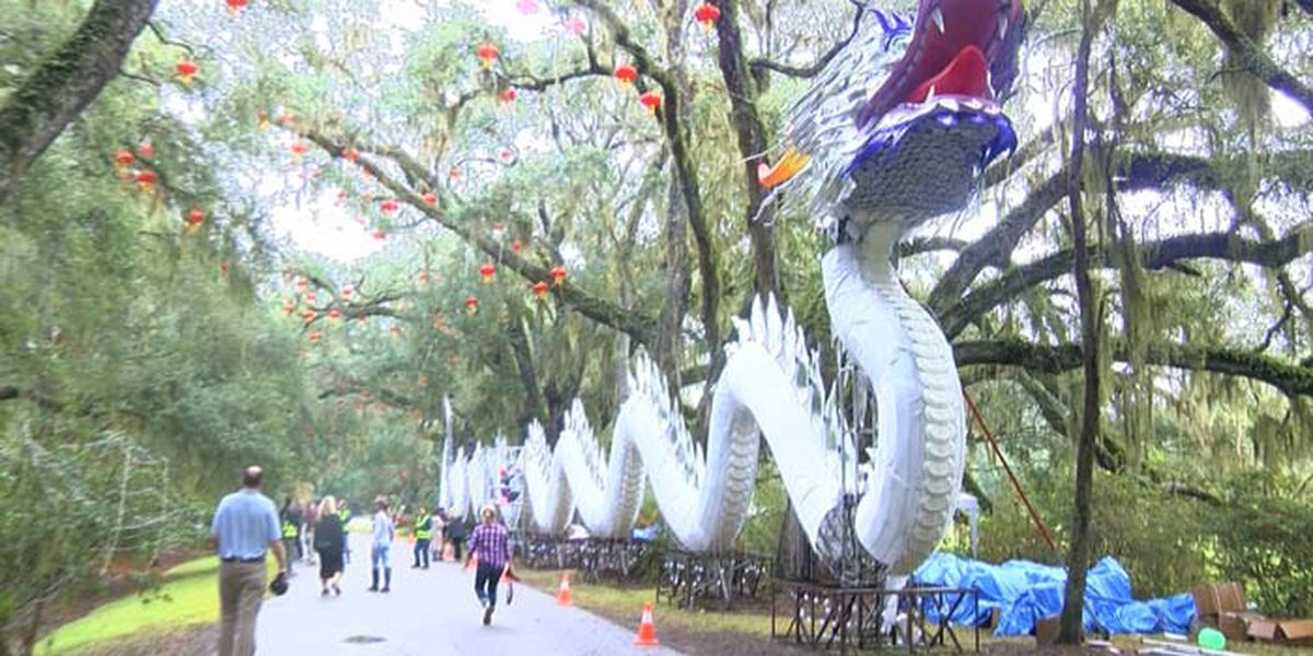 Magnolia Plantation to host 'Lights of Magnolia' beginning in November