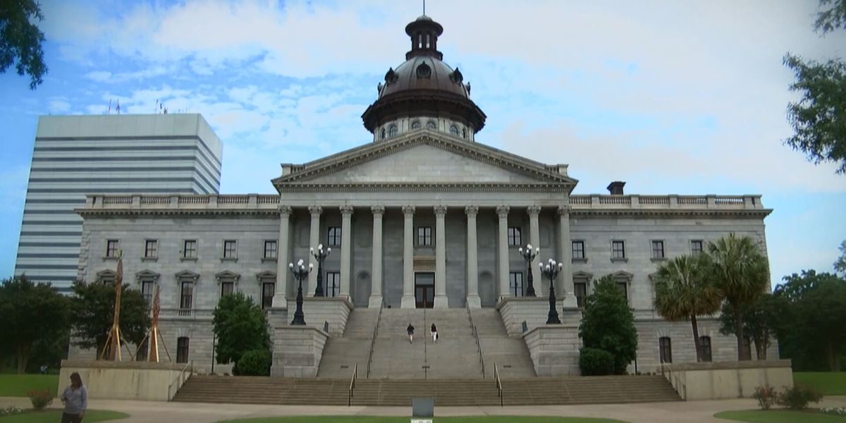 SC bill would prohibit sex offenders from working, volunteering around kids