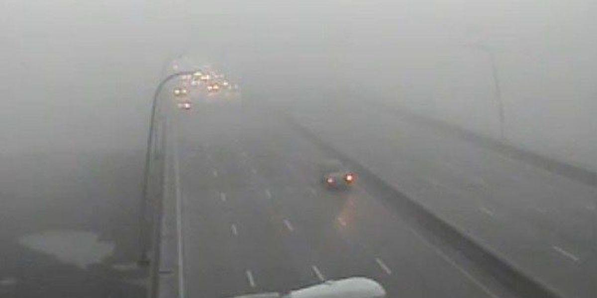 Lowcountry under dense fog advisory
