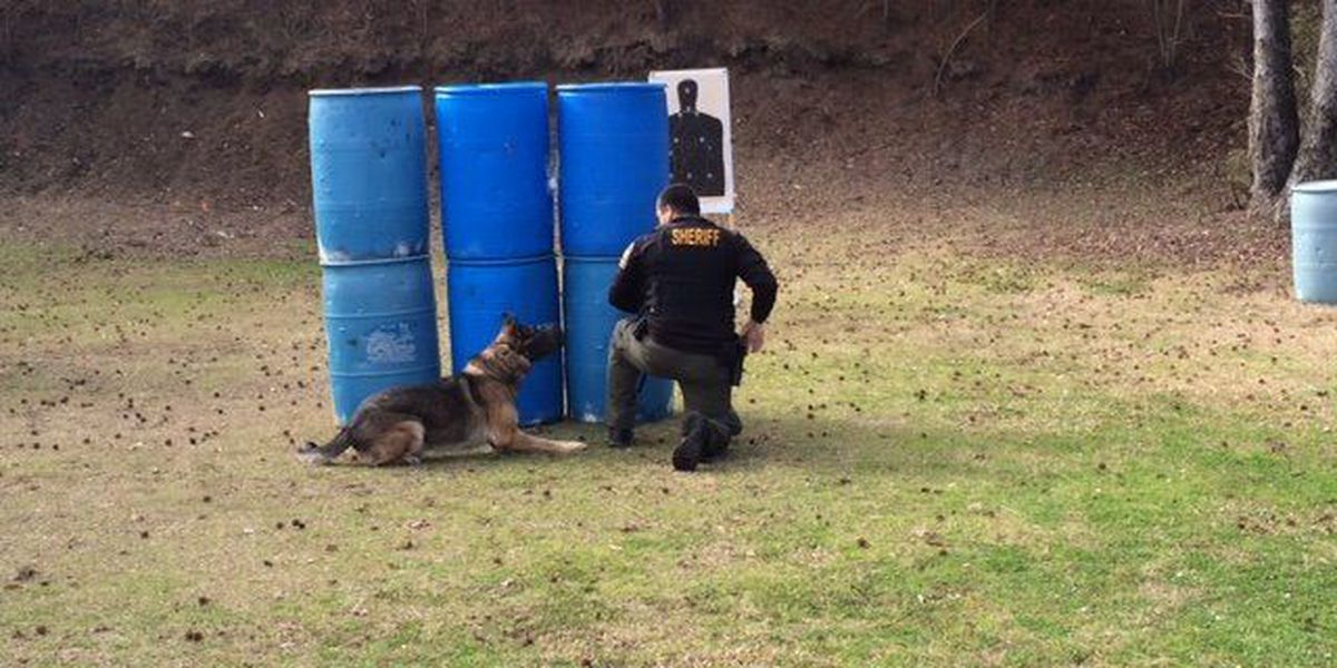 Tri-County law enforcement agencies to receive bulletproof K9 vests Thursday