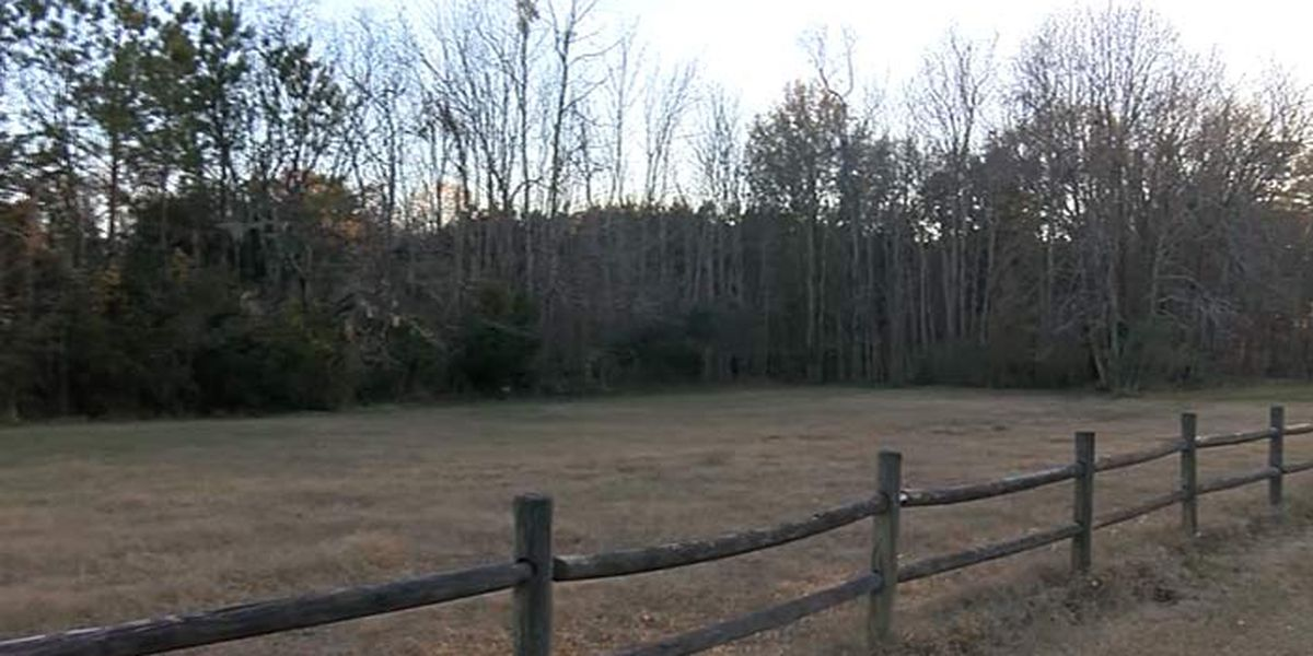 New subdivision in the works on Hwy. 17