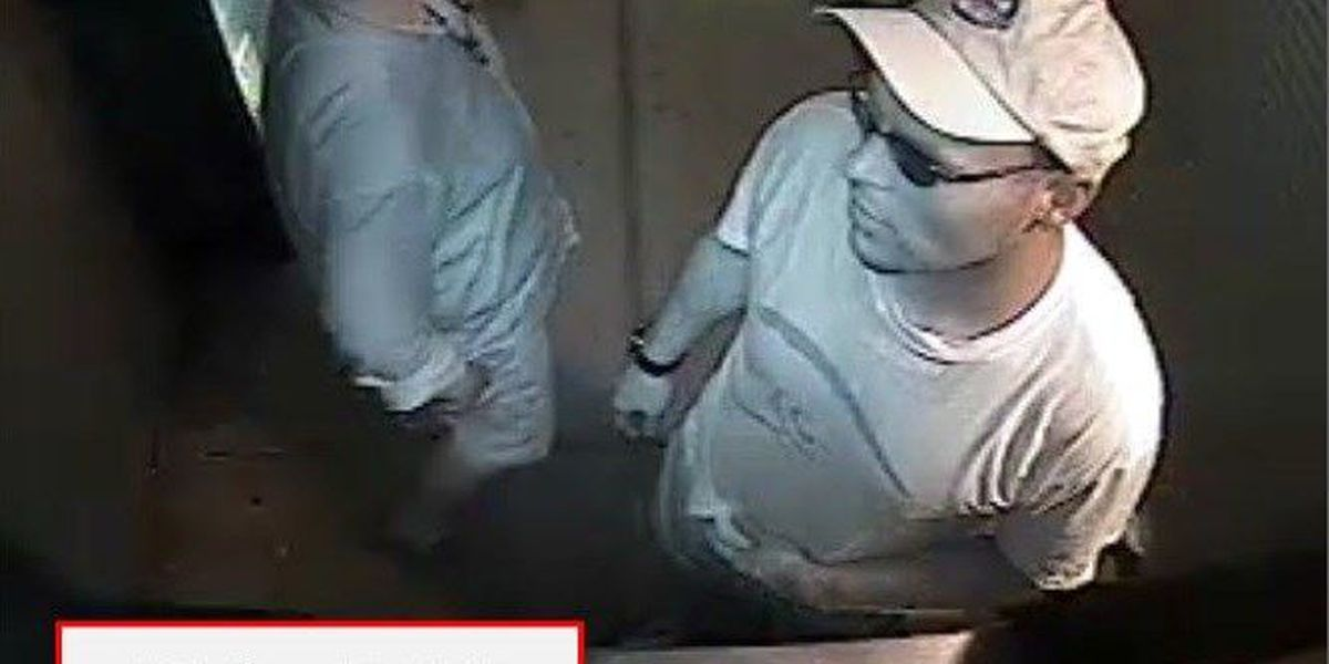 Police release surveillance images in gas station burglaries