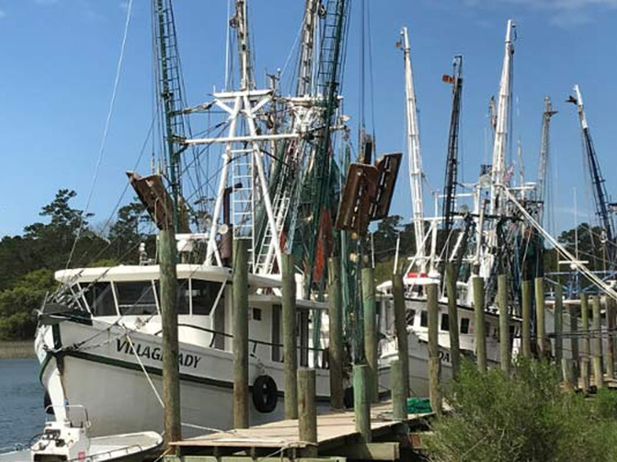 Shrimpers want season opening delayed: 'Everybody's pretty much scared to go in the boats'