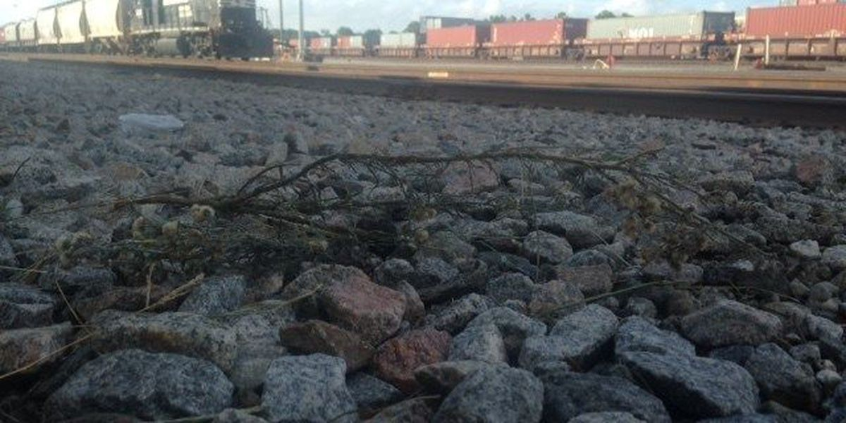 A survivor's story: Ohio man teaching railroad safety after train severs both legs