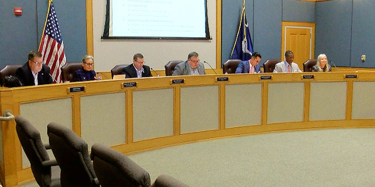 Heated exchange at Goose Creek City Council meeting over city administrator position