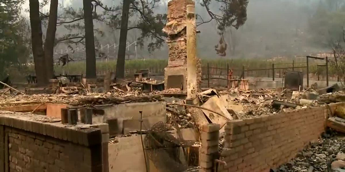Between COVID and wildfires, Calif. wineries suffer huge economic hit