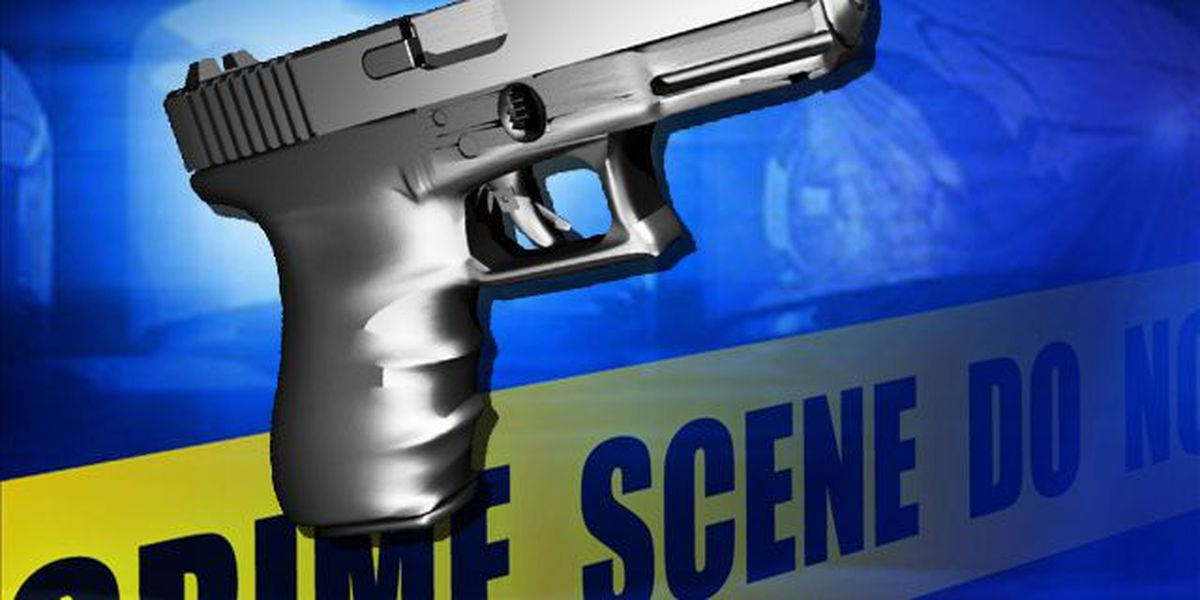 Neighbors: Shots fired after altercation, no one injured