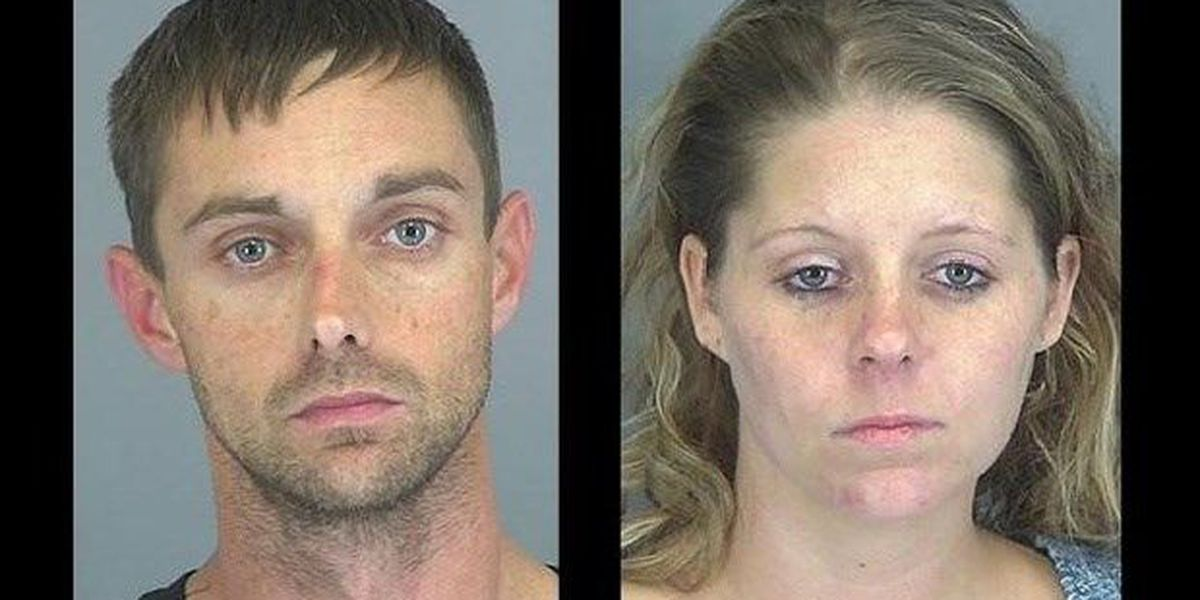 Report: SC couple arrested after reporting possums, people jumping out of fridge