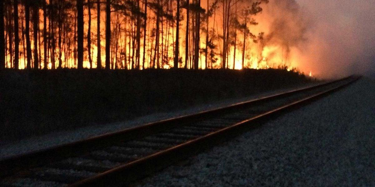 Man severely burned after attempting to stop Berkeley Co. forest fire