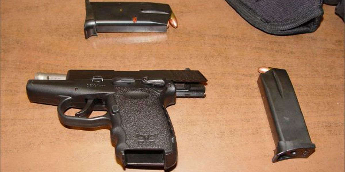 TSA finds loaded gun in carry-on bag at Charleston airport