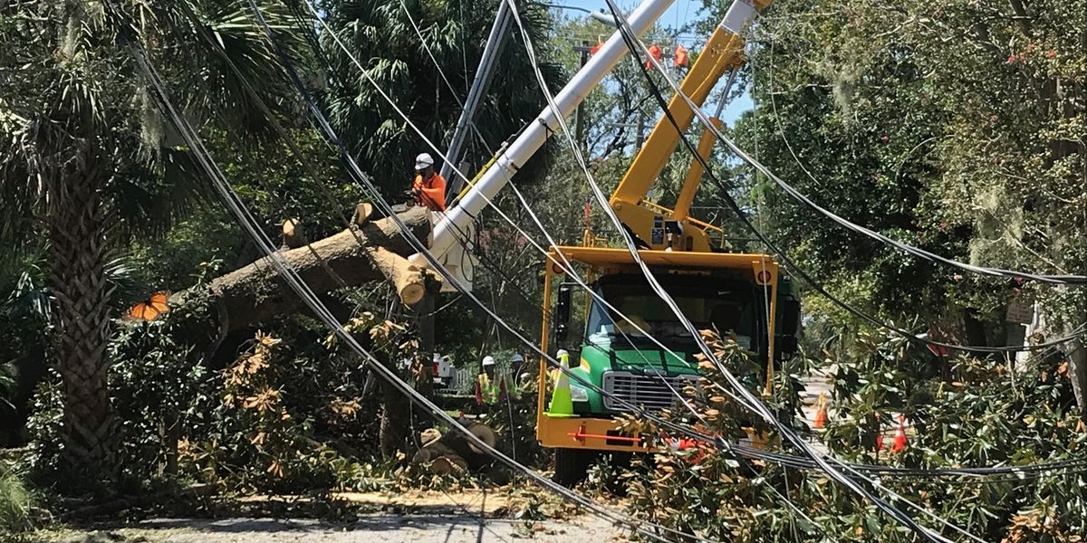 Dozens of trees still down as crews work to clean up Charleston