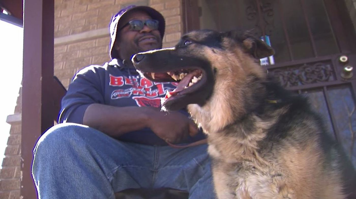 Teen brings back stolen service dog after blind owner pleads for return