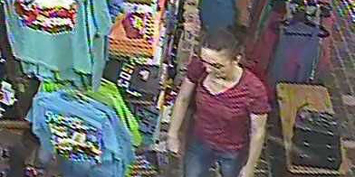 Georgetown Co. Sheriff's Office searching for shoplifting suspects