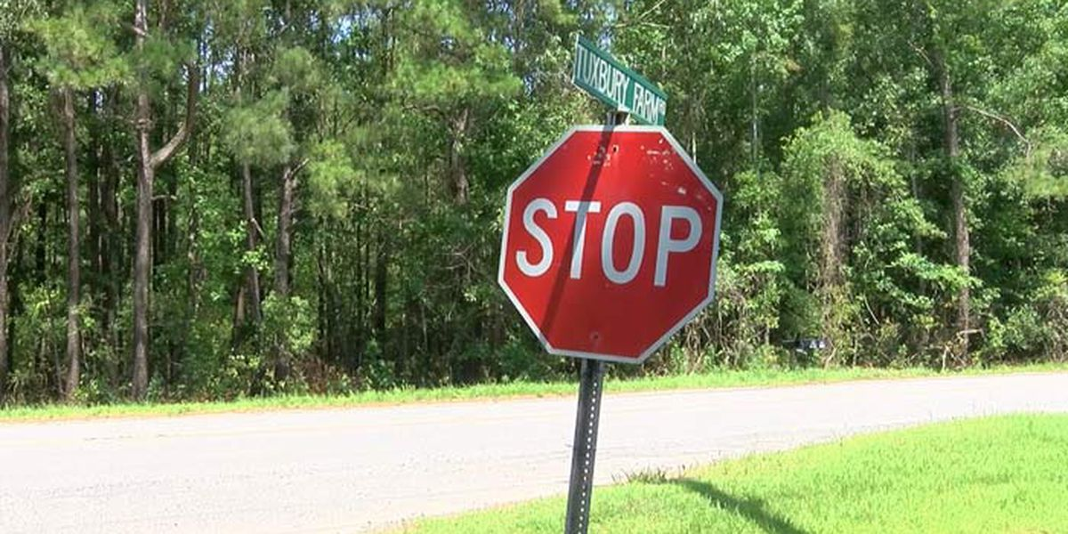 Cainhoy subdivision seeks final approval for over 100 new homes