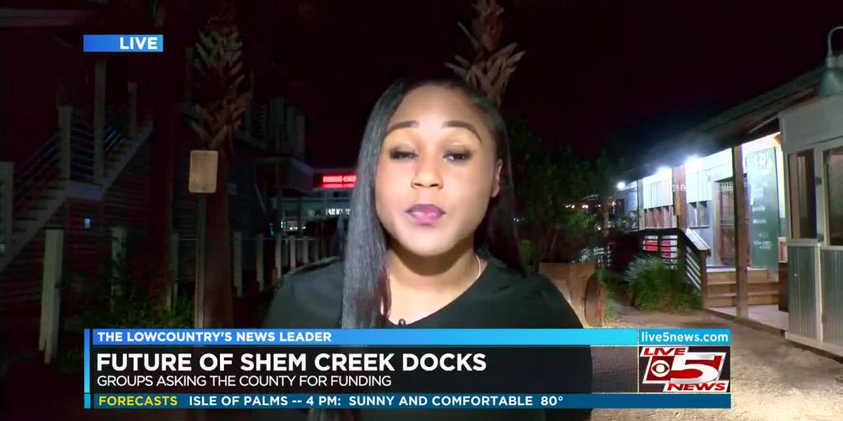 VIDEO: Greenbelt funds could save part of Wando dock at Shem Creek