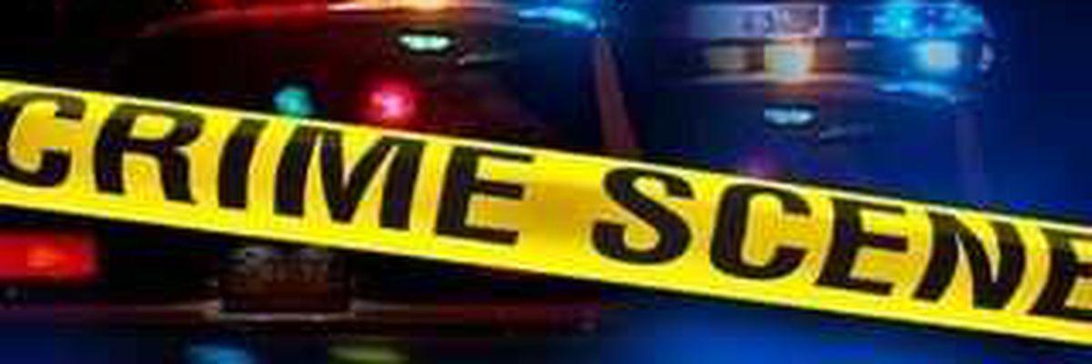 Deputies investigating armed robbery in Charleston County