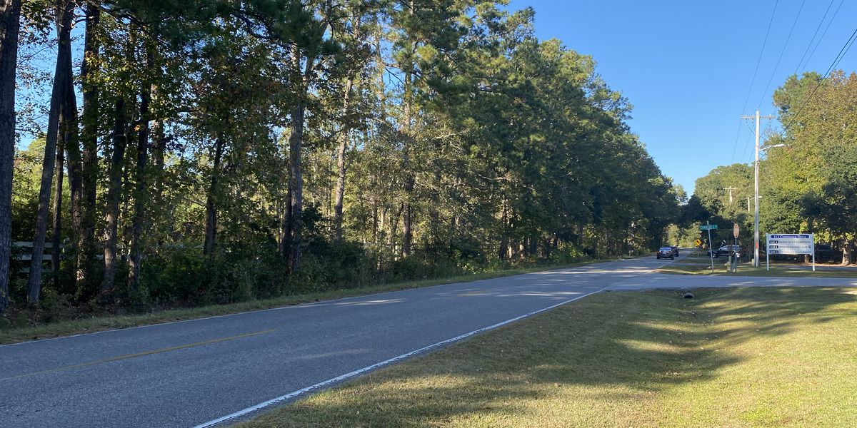 Planning commission denies request that would pave way for apartment complex on Pawleys Island