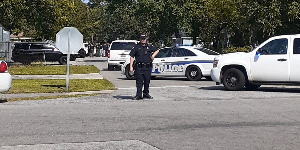 Police officers respond to domestic disturbance in N. Charleston