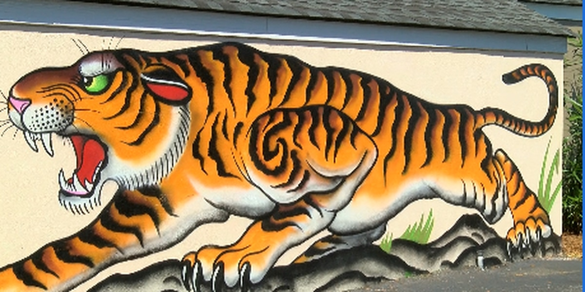 James Island to decide future of town's murals
