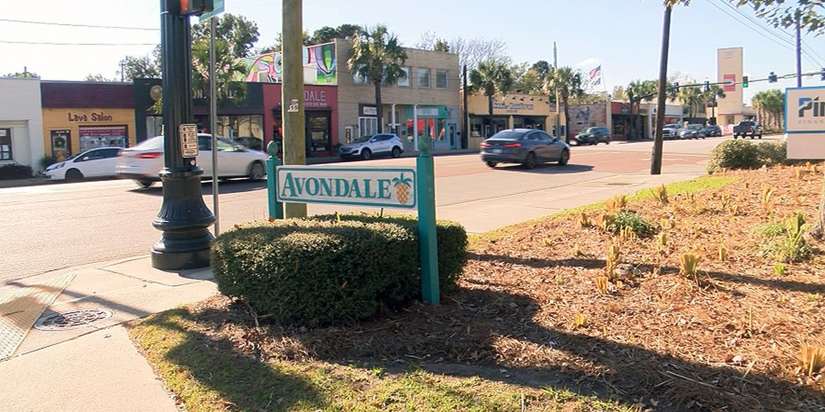 Charleston leaders to discuss chain restrictions for Avondale business district