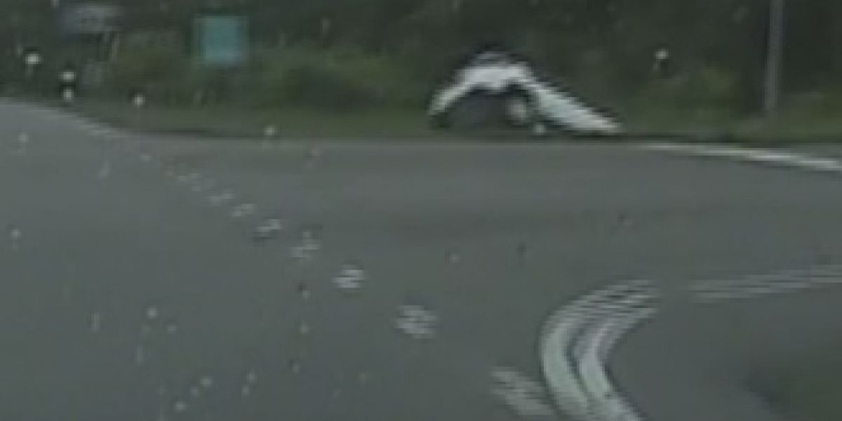 Lawsuit calls for change after Goose Creek police chase ends in injuries