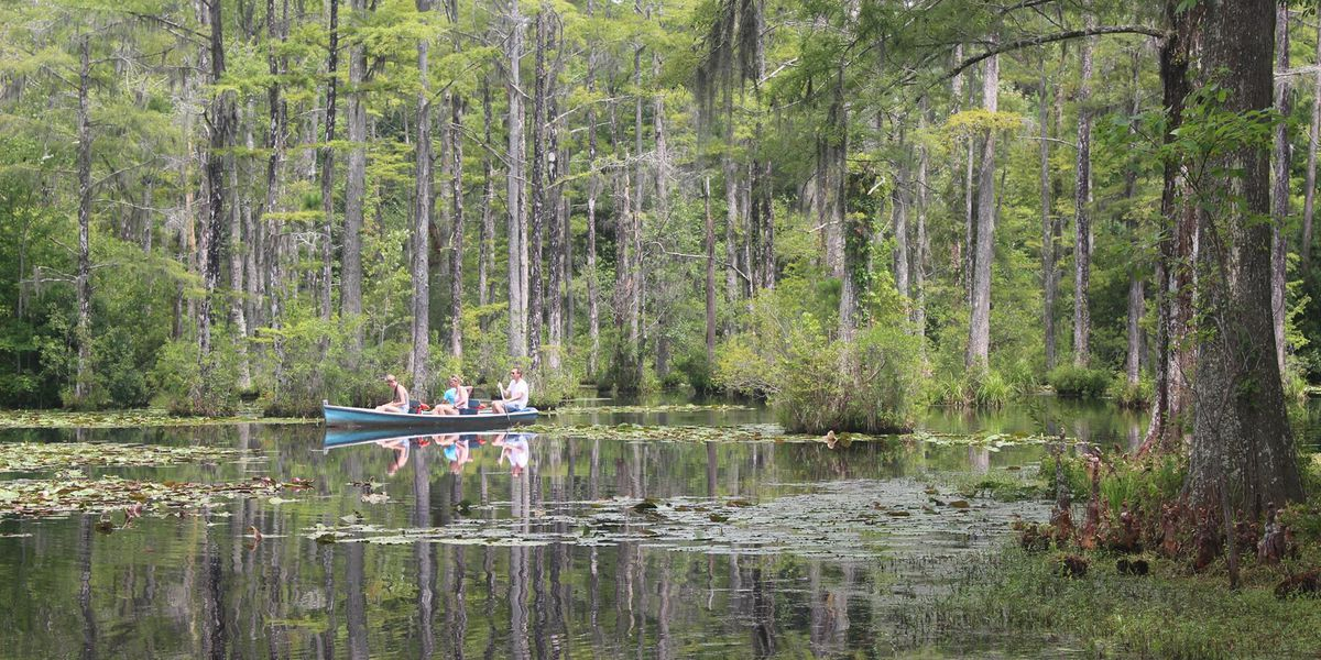 Berkeley Co. approves reconstruction plan for Cypress Gardens