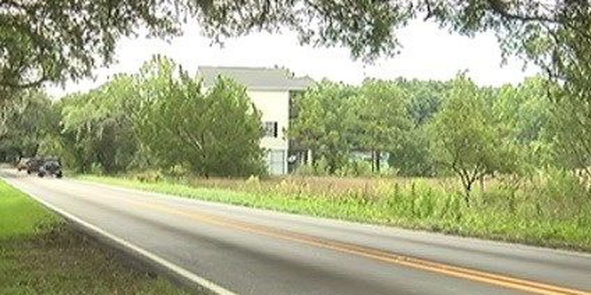 One of SC's most scenic roads, preserving Riverland Drive's beauty