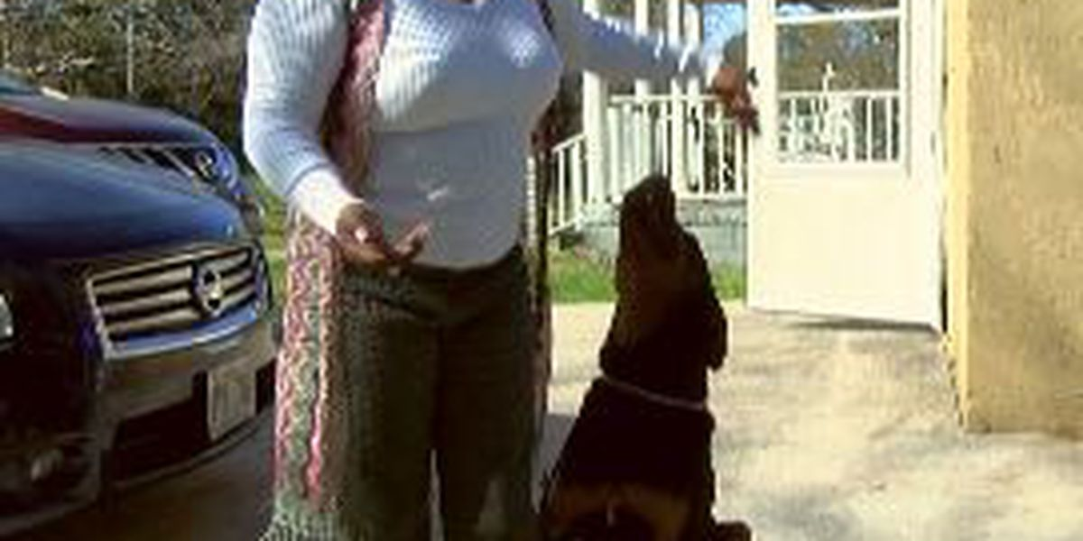 James Island woman attacked, dragged by dogs outside her home