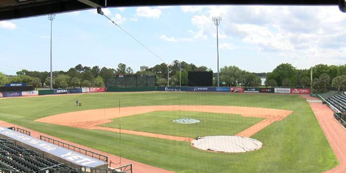 RiverDogs single-day tickets go on sale Thursday