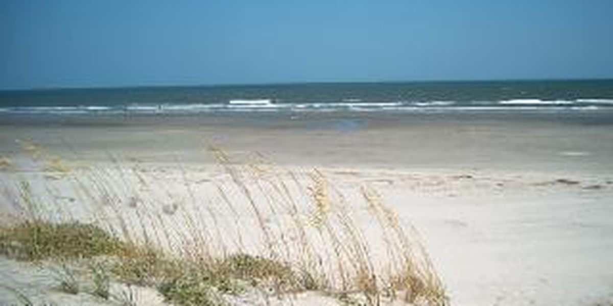 Pay to Park: Isle of Palms considering paid parking passes for beachgoers