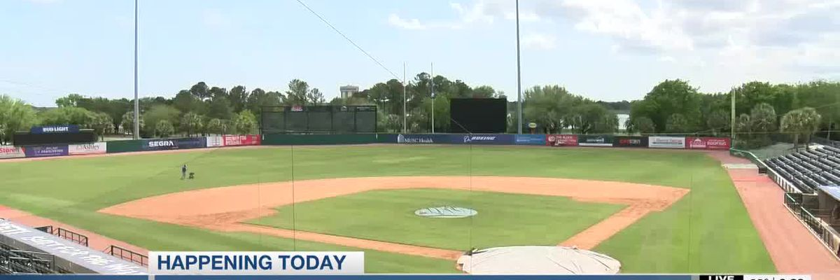 VIDEO: RiverDogs single-day tickets go on sale Thursday morning
