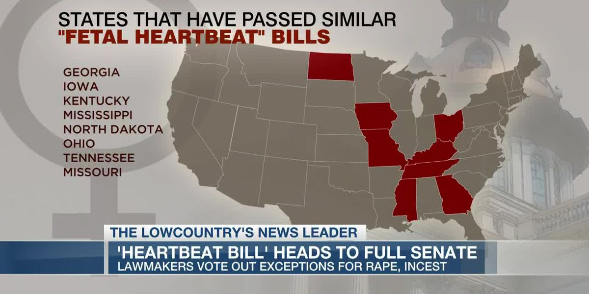VIDEO: SC 'Heartbeat Bill' could reach full Senate early next week