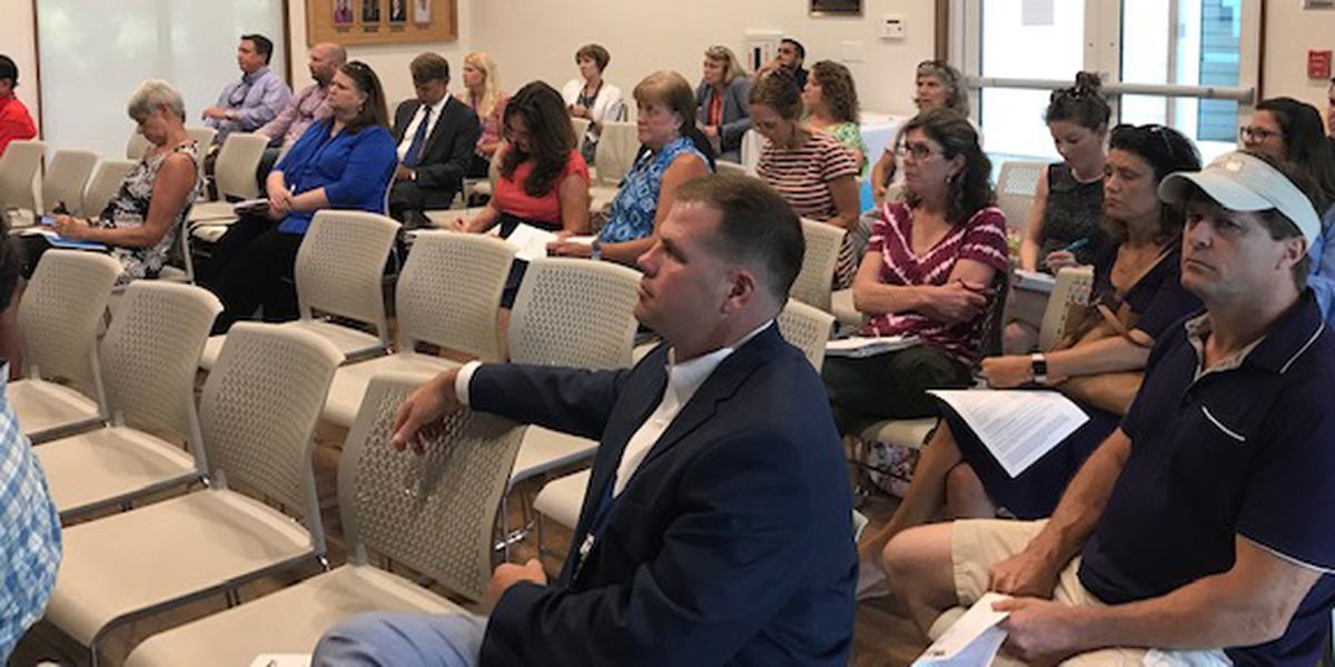 James Island residents concerned about proposed Central Park Cluster development