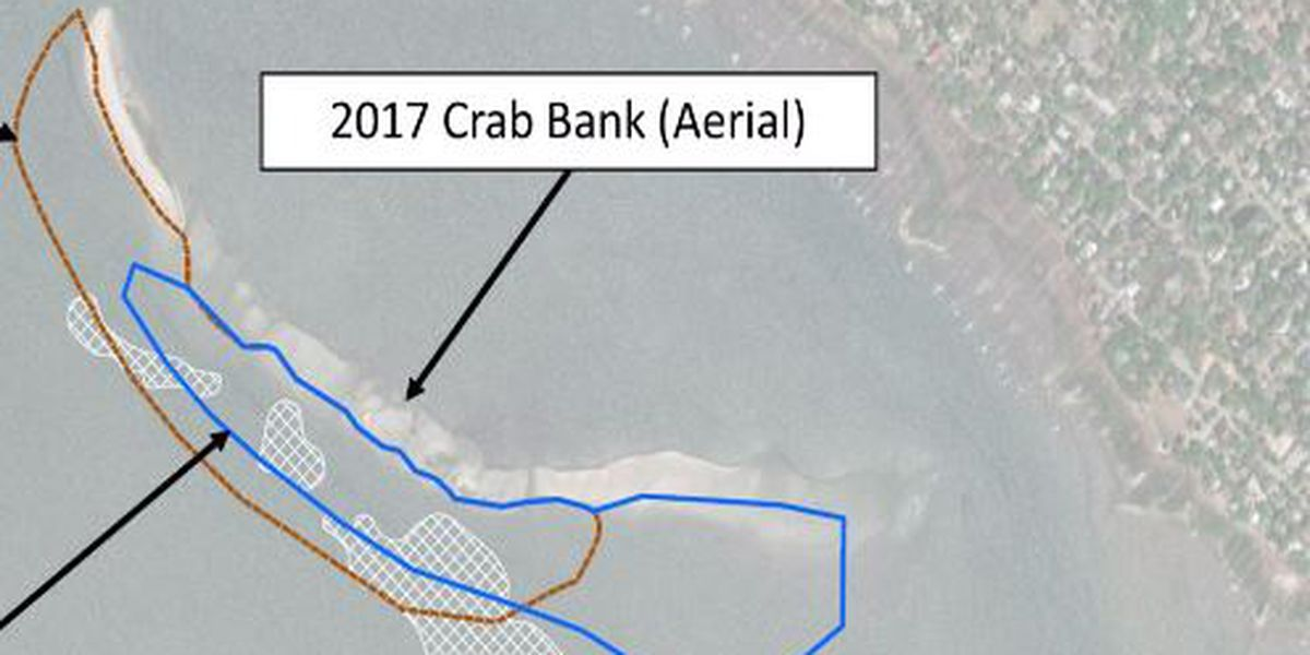 Findings in crab bank report say dredging material should be moved southeast