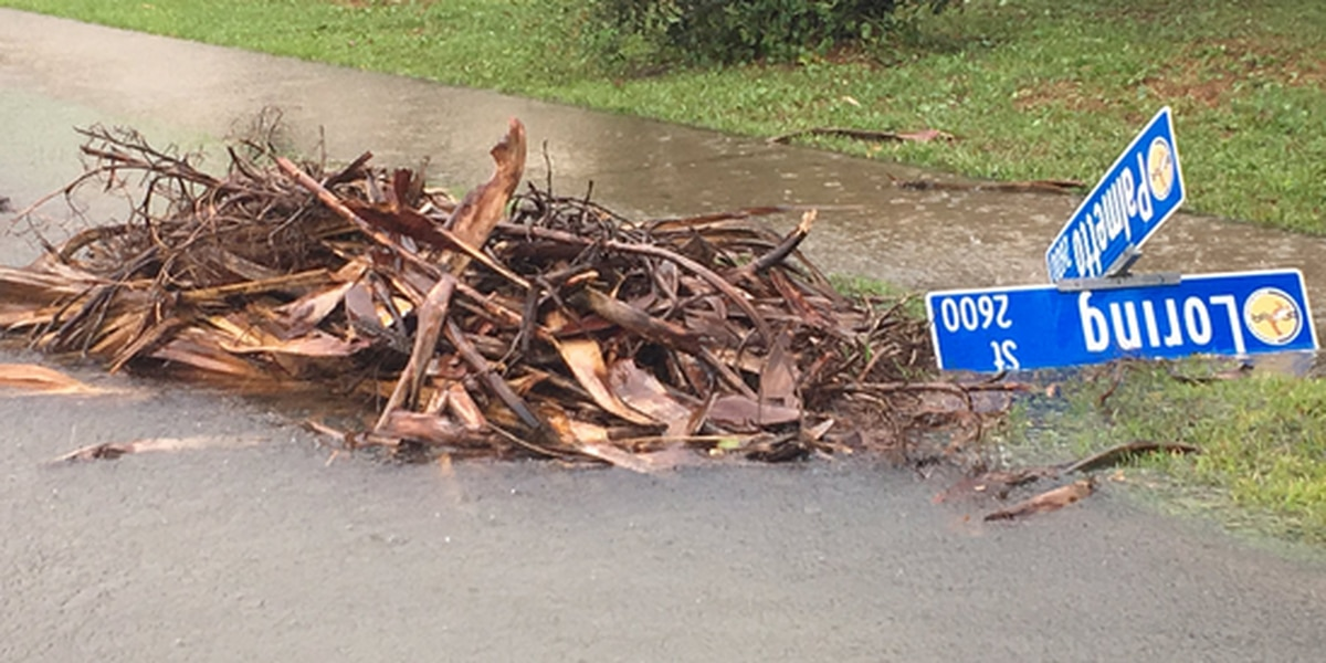 Edisto Beach roads deal with standing water from Tropical Storm Julia